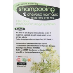 Shampooing cheveux normaux